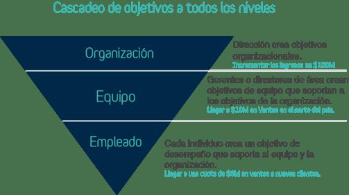 Cascadeo_objetivos