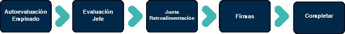 flujo_evaluacion_de_desempeño